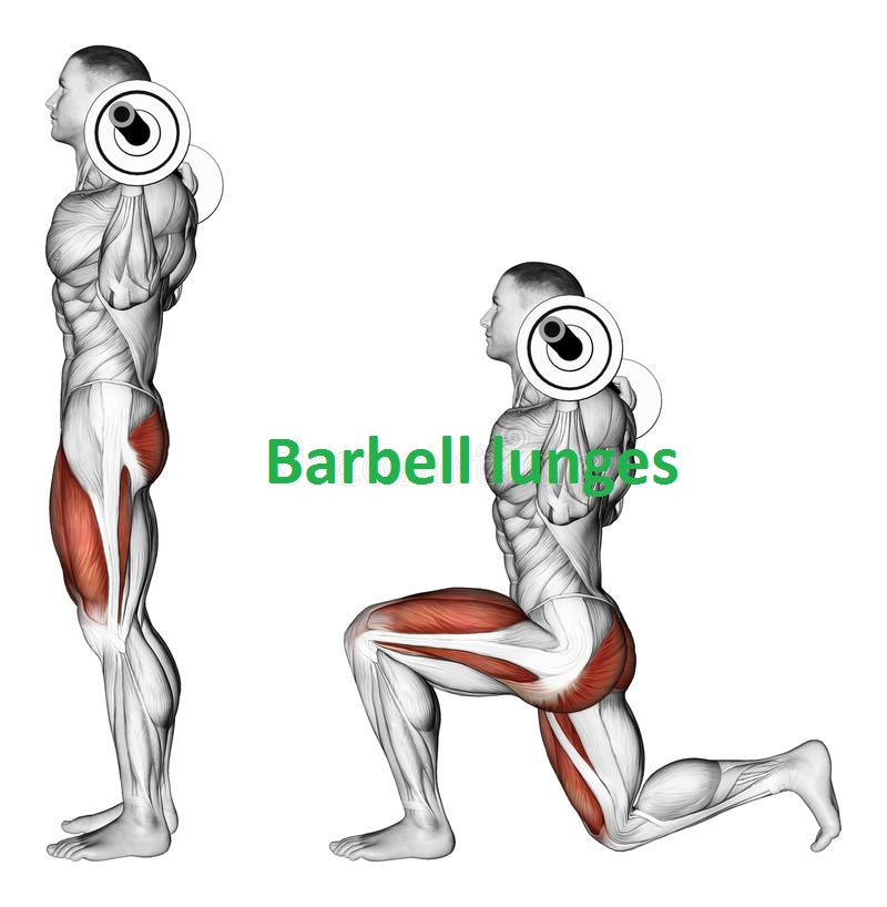 Barbell Lunge  Workout Guide For Quadriceps