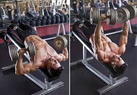 Decline  Dumbbell Bench Press.