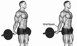 Barbell Behind The Back Wrist Curl
