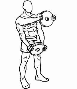 Plate Front Raise-ShoulderExercise.