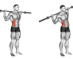 Barbell Abdominal Side Bend