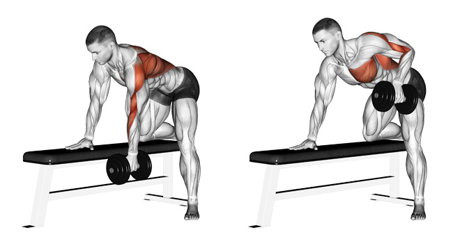 One Arm Dumbbell Row Workout Guide
