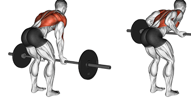 Barbell Bent Over Rows.