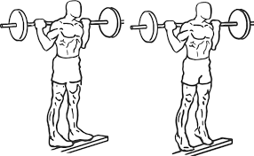 Barbell Calf Raise Standing- Calf Exercise.