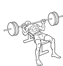 Barbell Flat Bench Press- Chest Exercise.
