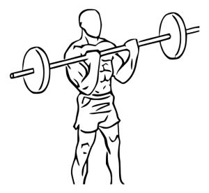 Reverse Barbell Curl Standing 1