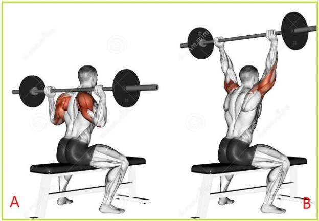 Military Barbell Behind Neck